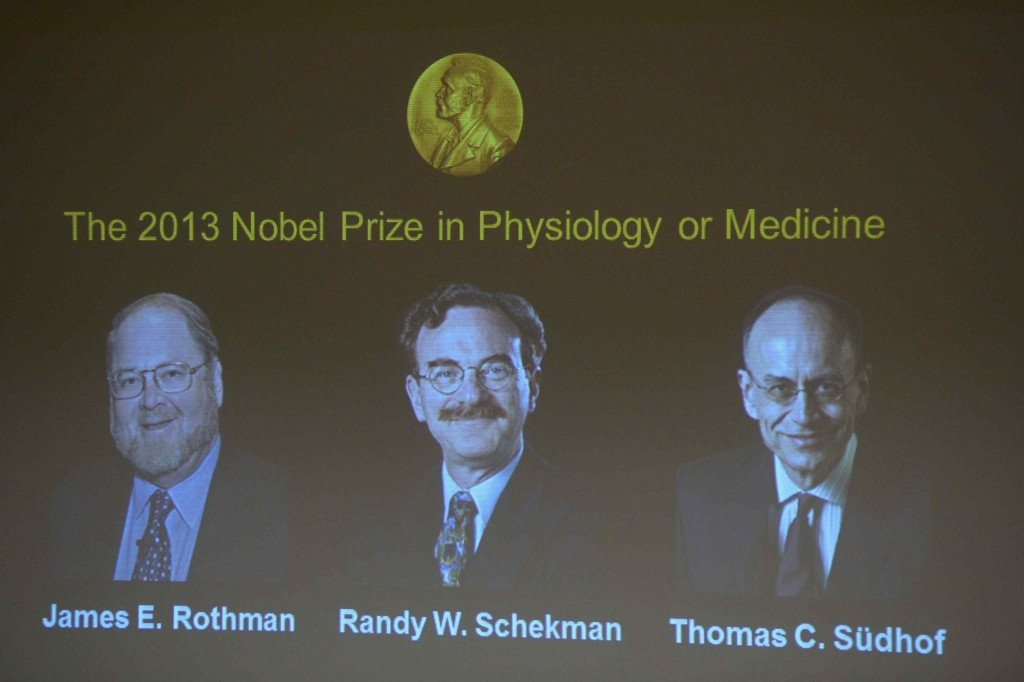 Portraits of winners of the 2013 Nobel prize for medicine or physiology, James Rothman, Randy Schekman and Thomas Suedhof (L-R), are displayed on a screen at the Nobel Assembly at the Karolinska Institute in Stockholm October 7, 2013. Two Americans, Rothman and Schekman, and Germany's Sudhof won the prize for research into how the cell organises its transport system, the award-giving body said on Monday. REUTERS/Janerik Henriksson/TT News Agency (SWEDEN - Tags: SCIENCE TECHNOLOGY HEALTH) ATTENTION EDITORS - THIS IMAGE WAS PROVIDED BY A THIRD PARTY. FOR EDITORIAL USE ONLY. NOT FOR SALE FOR MARKETING OR ADVERTISING CAMPAIGNS. THIS PICTURE IS DISTRIBUTED EXACTLY AS RECEIVED BY REUTERS, AS A SERVICE TO CLIENTS. SWEDEN OUT. NO COMMERCIAL OR EDITORIAL SALES IN SWEDEN. NO COMMERCIAL SALES ORG XMIT: SIN002